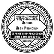 печать ИП 220